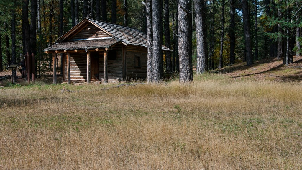 Historic Mogollon Rim Country